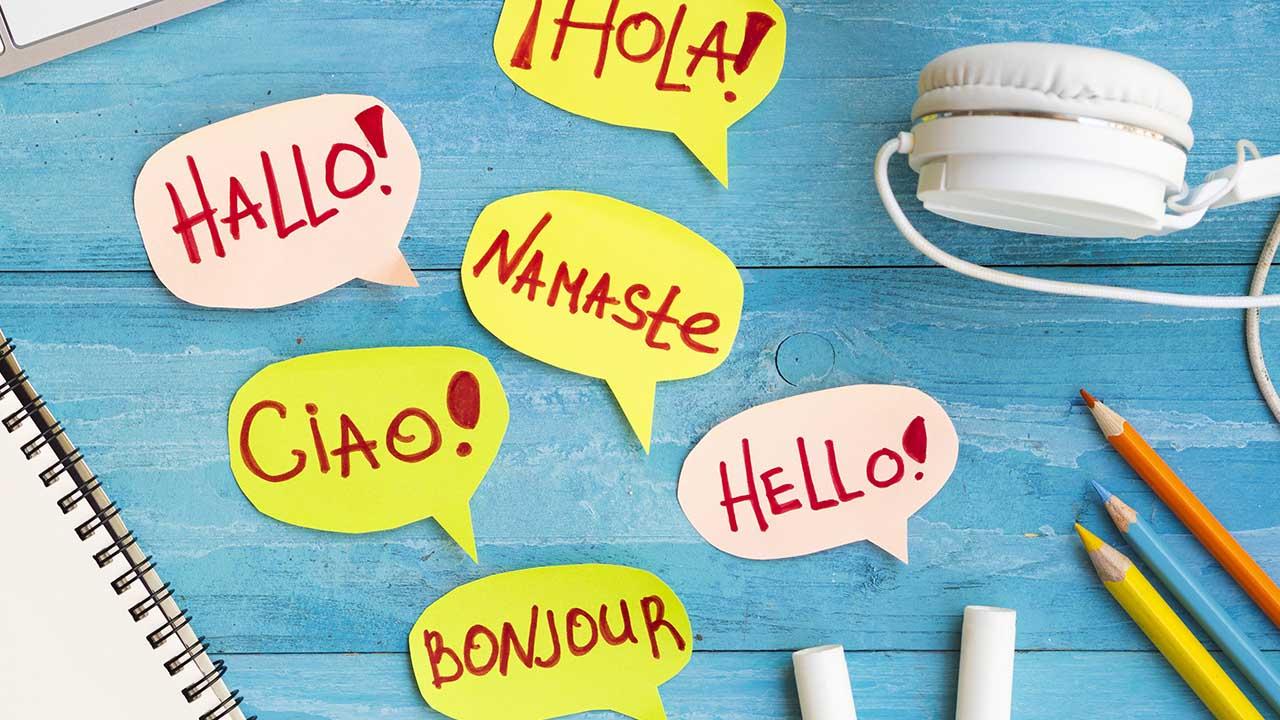 Escuela de idiomas en Torrevieja